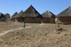 zimbabwe001