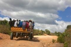 zimbabwe007