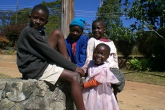 zimbabwe017