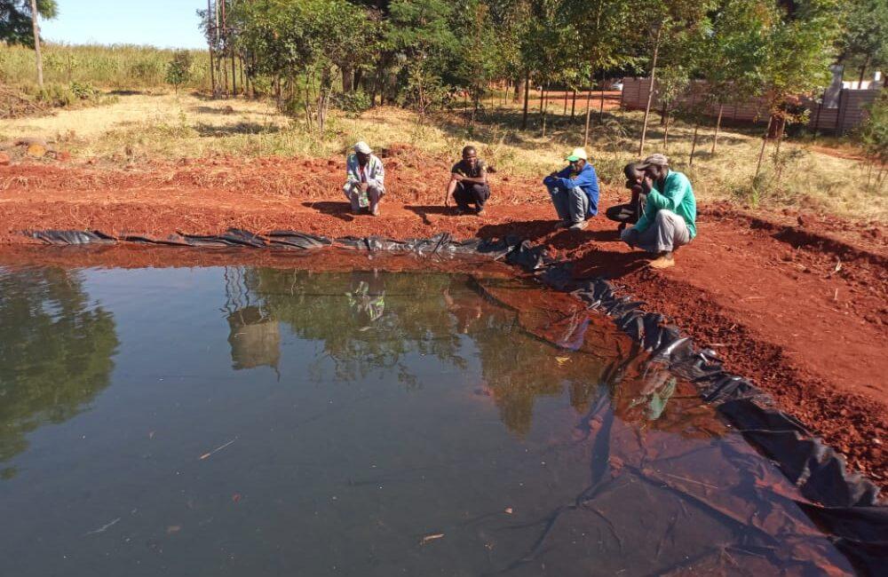 Glen Forest: Fischteich für Schule und Gemeinde